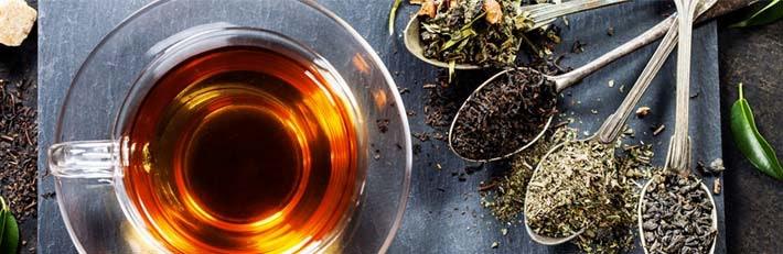 Blushwood Tree Tee Kaufen