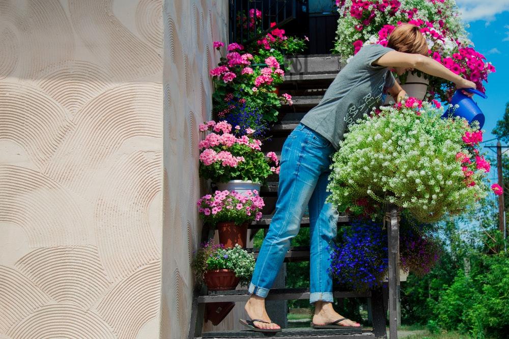 Mit diesen Tipps überleben deine Balkonpflanzen auch harte Zeiten
