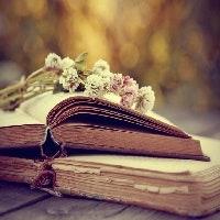 Beste (Hör-)Bücher für kalte Tage