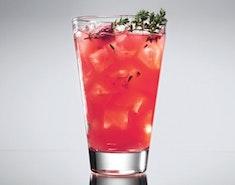Der große Gin-Überblick - wie man den edlen Tropfen genießt