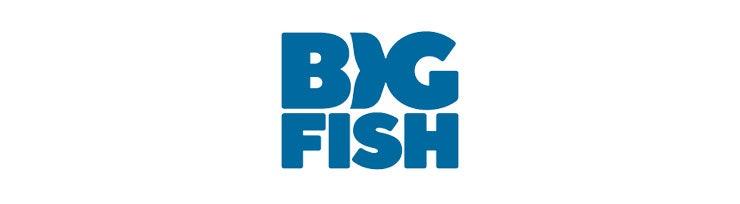 Big Fish Deutsch